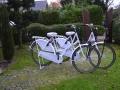 Our rental bikes